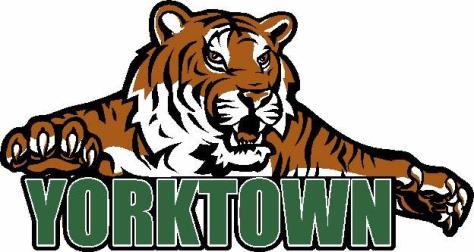 Yorktown Tiger