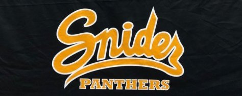 FORTWAYNESNIDERPANTHERS